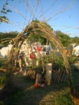 permaculture arch, entrance to permaculture field