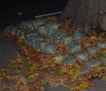 even the sculpted heads were now buried - under autumn leaves