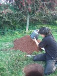 soil which he's emptying on the pile - the hole's for one of the compost toilets