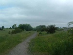 60. looking north from the trackbed by Earby industrial estate