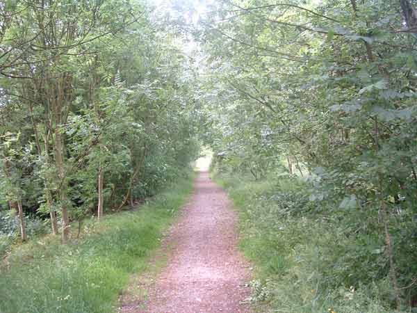 75. the trackbed near the footpath crossing