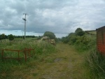18. looking east at farm clutter on the trackbed