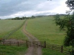 42. looking south at a farm track heading up the hill from the trackbed