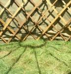 yurt roof shadows